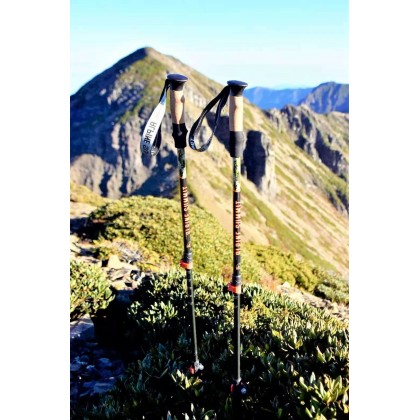 Alpine Summit Hiking/Trekking Poles Trail Master [Pair] with Quick Locks, Walking Sticks with Strong and Lightweight 7075 Aluminum and Cork Grips - Enjoy The Great Outdoors
