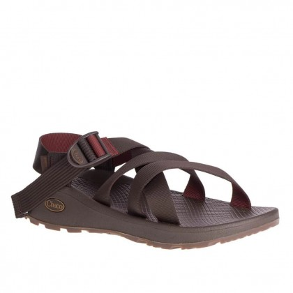 Chaco Men's Banded Z Cloud - Java Port
